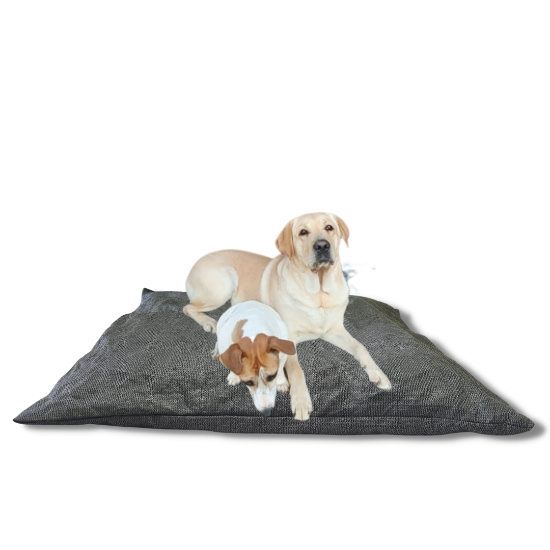 ViewProtect Dog Beds